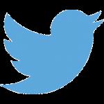 記事公開時に自動でツイート!「WP Twitter Auto Publish」の使い方