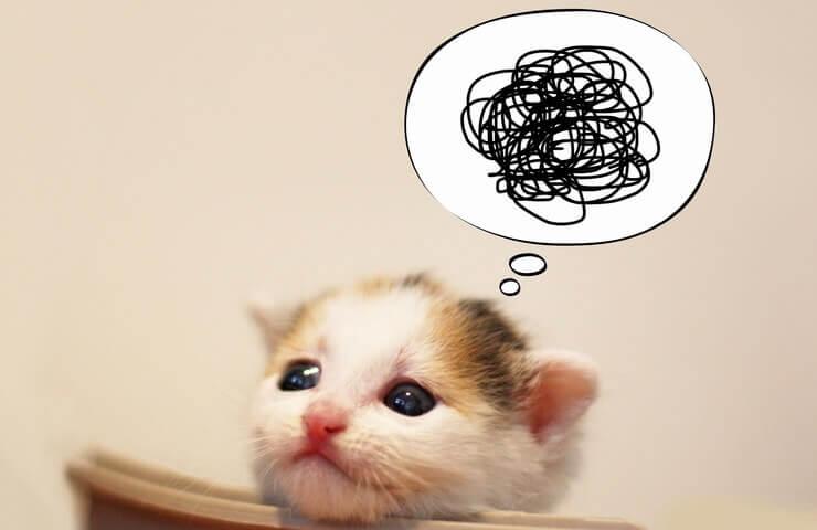 ブログでやることが多すぎて困っている人のイメージ図