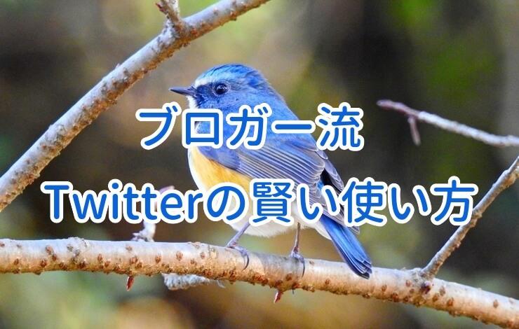 【ブロガー流】Twitter疲れを防ぐ対策&賢い使い方