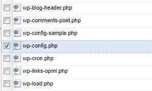 さくらサーバーのWebFTPにてwp-config.phpを開こうとしている様子